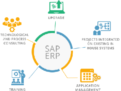 support business with sap upgrade service